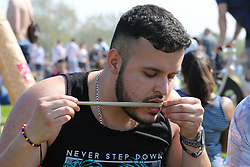 © Licensed to London News Pictures. 20/04/2019. London, UK. A man prepares to smokes cannabis as thousands of revellers gather in London's Hyde Park as part of '4/20 Day', an unofficial International Weed Day, an event that takes place every year on 20 April for people to smoke cannabis without been detained. Attendees are calling on the Government to decriminalise Class B drug and raise awareness about the drug. Photo credit: Dinendra Haria/LNP