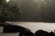 Rain<br /> Rewa River<br /> Rainforest<br /> GUYANA. South America