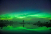 "Quite strong aurora (Northern lights) dancing over larger bog pool, nature reserve ""Niedrāju–Pilkas purvs"", Latvia Ⓒ Davis Ulands 