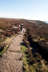 Walker and her dog Derwent Edge in the Peak National Park..http://www.pauldaviddrabble.co.uk.25 March 2012 .Image © Paul David Drabble