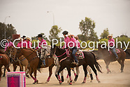 Pink Lady Breast Cancer Barrel Race