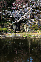 Shinchi Teien or Sacred Pond Garden was established during the early Meiji period.  Left dormant for many years, it was restored in 1999.  The centerpiece is a serene pond with strolling paths around it.  This secret garden is located adjacent to controversial Yasukuni Shrine.