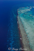 aerial view of southern Belize barrier reef, showing Gladden Spit, where there is a sharp bend in the reef, and showing spur and groove coral formations outside of the reef crest, Gladden Spit and Silk Cayes Marine Reserve, off Placencia, Belize, Central America ( Caribbean Sea )