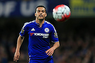 Pedro of Chelsea looks on. Barclays Premier league match, Chelsea v Tottenham Hotspur at Stamford Bridge in London on Monday 2nd May 2016.<br /> pic by Andrew Orchard, Andrew Orchard sports photography.