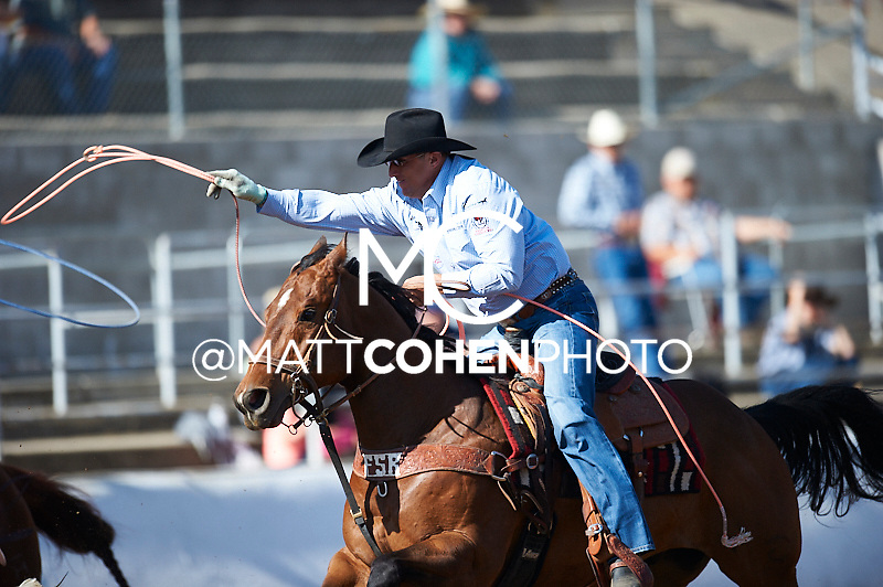 Team roper Kevin Daniel of Franklin, TN competes at the Clovis Rodeo in Clovis, CA.<br /> <br /> <br /> UNEDITED LOW-RES PREVIEW<br /> <br /> <br /> File shown may be an unedited low resolution version used as a proof only. All prints are 100% guaranteed for quality. Sizes 8x10+ come with a version for personal social media. I am currently not selling downloads for commercial/brand use.