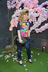 Jodie Harsh at the Warner Music Group and British GQ Summer Party in partnership with Quintessentially held at Nobu Shoreditch, Willow StreetLondon England. 5 July 2017.<br /> Photo by Dominic O'Neill/SilverHub 0203 174 1069 sales@silverhubmedia.com