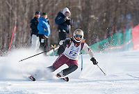 Eastern Cup FIS slalom alpine ski race ladies and men at Cranmore, North Conway, NH  January 29, 2012.