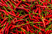 Red Peppers with green stems in bright sunlight. Not sharp but good for background. Raw to Jpg