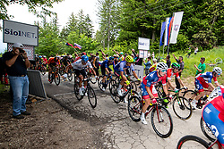 Peloton at the top fo the climb Lipa during 2nd Stage of 27th Tour of Slovenia 2021 cycling race between Zalec and Celje (147 km), on June 10, 2021 in Slovenia. Photo by Matic Klansek Velej / Sportida