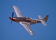 Adam, Eddie Bobo and I went to the Confederate Air Force show in Midland Texas