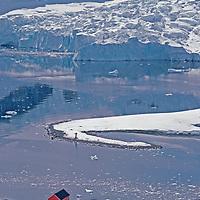 ANTARCTICA. Hut and glacier icefall at Argentina's Almirante Brown science base, Paradise Bay, Antarctic Peninsula.
