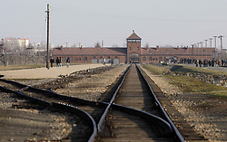 The train tracks at Birkenau. Today, Sunday January 27th, is International Holocaust Memorial Day which marks the date when Auschwitz was liberated.