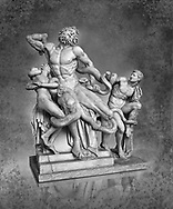 Statue group identified as as the Laocoon described by Pliny as a masterpiece made by the sculptors of Rhodes. The Laocoon depicts a scene from the Trojan War in which Athena and Poseidon sent two great serpants to wrap themselves around Laocoon and his two sons to kill them. Circa 40-30BC, Pope Clement XIV coillection, Vatican Museum Rome, Italy,  black background.  Black and White Wall art print by Photographer Paul E Williams