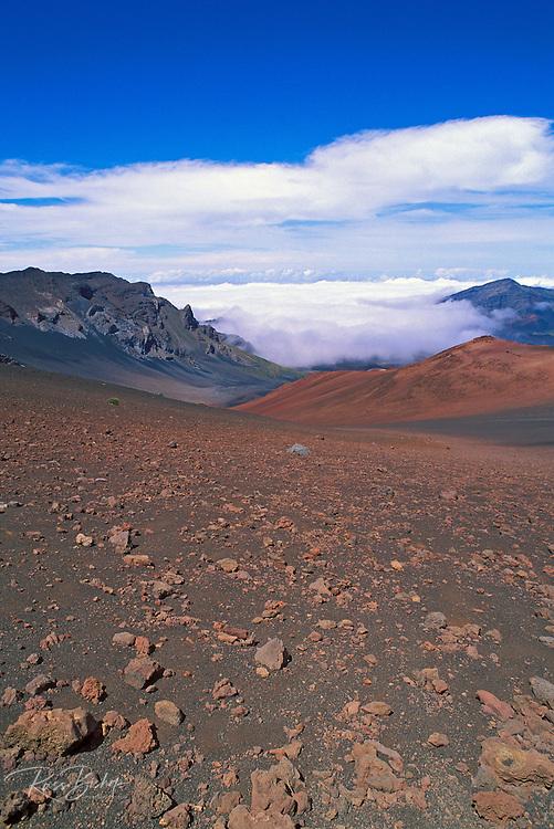 Lava field and cinder cone above a sea of clouds in Haleakala Crater, Haleakala National Park, Island of Maui, Hawaii