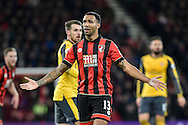 AFC Bournemouth Forward, Callum Wilson (13) disappointed with a decision during the Premier League match between Bournemouth and Arsenal at the Vitality Stadium, Bournemouth, England on 3 January 2017. Photo by Adam Rivers.