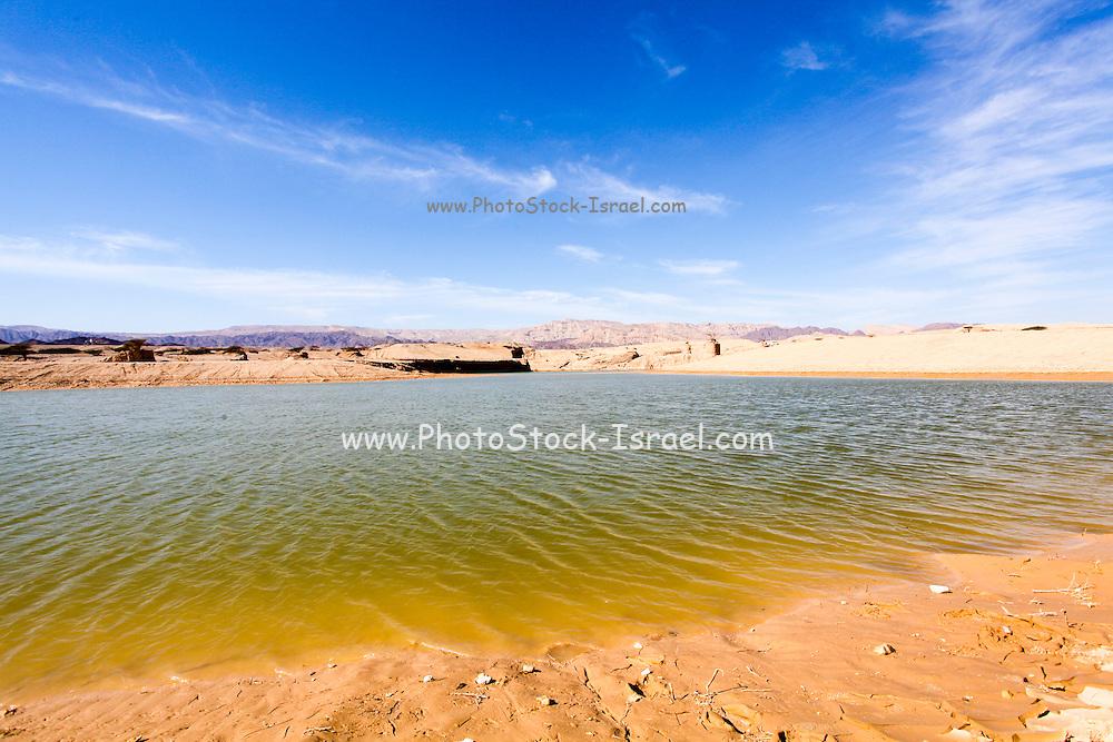 Israel, lake in Yeruham park in the Negev Desert