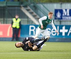Falkirk 3 v 2 Hibernian, Scottish Premiership play-off final, played 13/5/2016 at The Falkirk Stadium.