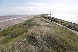Road and grassy dunes at Spurn Head; East Yorkshire; England; with North Sea on the left and Humber Estuary on the right,