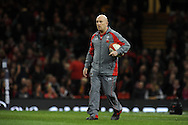 Wales coach Sean Edwards looks on before k/o. Autumn International rugby, 2013 Dove men series, Wales v South Africa at the Millennium Stadium in Cardiff,  South Wales on Saturday 9th November 2013. pic by Andrew Orchard, Andrew Orchard sports photography,