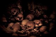 los cráneos de los niños que mandó a matar Herodes, Jerusalem