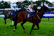 Grand Deed ridden by Hollie Doyle and trained by Archie Watson ridden in the Sky Sports Racing Sky 415 Novice Stakes - Mandatory by-line: Ryan Hiscott/JMP - 24/08/20 - HORSE RACING - Bath Racecourse - Bath, England - Bath Races