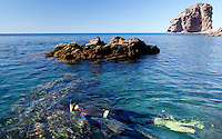 A snorkeler explores the marine lie in the nearshore waters of Kino Bay, Mexico.