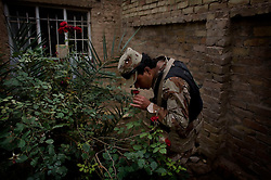 An Iraqi soldiers take a moment to stop and smell the roses during the routine search of a home in Adhamiya on Thursday April 27, 2007.