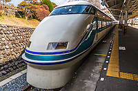 """Tobu Railways, """"Spacia"""" trains have been designed for a smooth, and comfortable ride. Luxurious private compartments are also available for groups.  Tobu Spacia is the most popular method of transport to Nikko, one of Japan's most popular UNESCO World Heritqge Sites."""