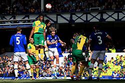 Sebastien Bassong of Norwich City climbs to win a header - Mandatory byline: Matt McNulty/JMP - 15/05/2016 - FOOTBALL - Goodison Park - Liverpool, England - Everton v Norwich City - Barclays Premier League