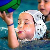 SERIE ROOKIE<br /> Nederland, Roelofarendsveen, 17-05-2015.<br /> Waterpolo, Z&PC Alkemade Minipolo toernooi<br /> Foto : Klaas Jan van der Weij