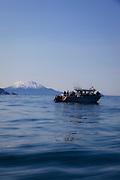 Salmon Fishing, Talon Lodge, Sitka, Alaska