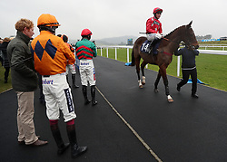 Subcontinent ridden by Charlie Deutsch in the parade ring before the Coral Download The App Maiden Hurdle during Coral Welsh Grand National Day at Chepstow Racecourse, Chepstow.