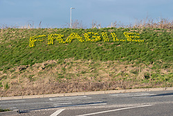 """© Licensed to London News Pictures; 18/03/2021; Bristol, UK. Shortly before the Spring Equinox motor vehicles pass by an environmental art piece, """"Bulb Flash Action (say it with flowers)"""", of spring daffodils which spell the words """"Fragile"""" and """"Earth"""" on opposite sides of the Lime Kilns roundabout on the A38 on the way to Bristol Airport. The piece was designed by a local artist and garden designer Tim Robertson who with volunteers planted 3k Narcisii bulbs last year in some 'guerilla gardening'. The piece is intended to draw attention to the current climate crisis, human fragility and plans to expand Bristol airport. The roundabout was chosen because of the old lime kilns left in the middle, because lime was used in concrete which contributes to carbon emissions. Photo credit: Simon Chapman/LNP."""