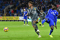 Football - 2018 / 2019 Premier League - Cardiff City vs. Leicester City<br /> <br /> Demarai Gray  of Leicester City challenged by Danny Ward Cardiff City in Leicster's 1st match since the death of Vichai Srivaddhanaprabha, at Cardiff City Stadium.<br /> <br /> COLORSPORT/WINSTON BYNORTH