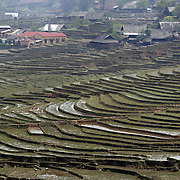 Terraced fields in the Highlands near Sapa, Northern Vietnam. The highlands are close to the Chinese border, inhabited by highland minorities including Hmong and Dzao groups. Sapa is now a thriving tourist destination for travelers taking the night train from Hanoi. Sapa, Vietnam. 16th March 2012. Photo Tim Clayton