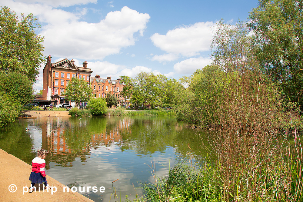 Barnes Pond, Barnes