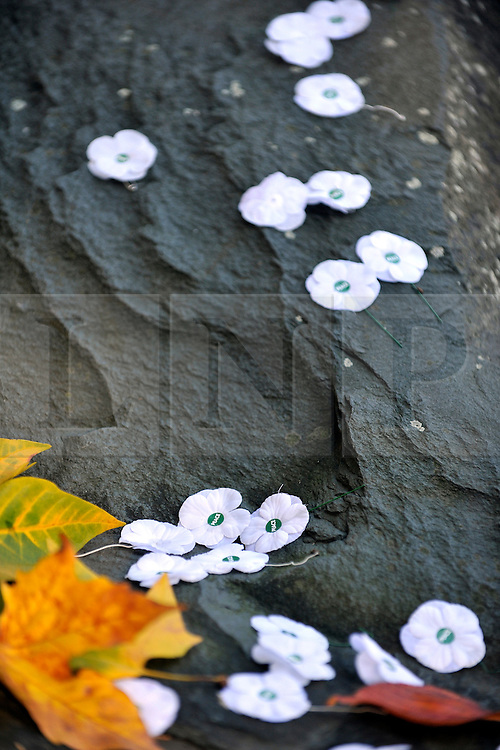 © Licensed to London News Pictures. 13/11/2011. London, UK. White poppies  on the memorial at the service.  Pledge Union White Poppy Remembrance Ceremony at the Conscientious Objectors Memorial in Tavistock Square Gardens today,  Sunday 13th Nov. Photo credit : Stephen Simpson/LNP