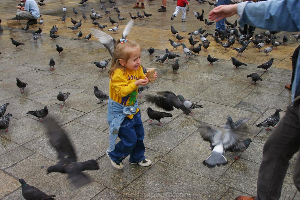 Krakow, Poland summer in Rynek Glowny (old town square) Pigeons attack little girl feeding them.