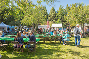 Live outdoor music and food vendors, Ritter Island, Thousand Springs Art Festival, Hagerman, Idaho.