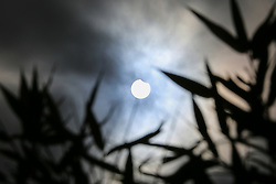 © Licensed to London News Pictures. 10/06/2021. London, UK. The partial eclipsing begins over north London as the Moon starts to touch the Sun's edge. Photo credit: Dinendra Haria/LNP