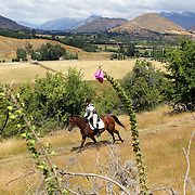 Katrina Peyton riding Ted in action during the Cross Country event at the Wakatipu One Day Horse Trials at the Pony Club grounds,  Queenstown, Otago, New Zealand. 15th January 2012. Photo Tim Clayton