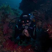 Dive Spot: Yelliet Kecil