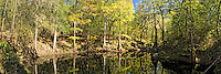 Lime Spring is one of the many beautiful tributaries to the Suwanne River in North Florida. This isolated view just blew me away and inspired this image - two photographs joined together to create a very detailed panorama with dazzling reflections and mysterious shadows - deep in the real Florida!