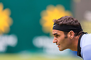 Halle, NRW, Germany. Friday 23rd June 2017. Roger Federer of Switzerland in action against Florian Mayer of Germany at the 25th Gerry Weber Open at Halle.