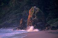 Sunset on coastal rock at Trinidad Beach, Trinidad, Humboldt County, CALIFORNIA