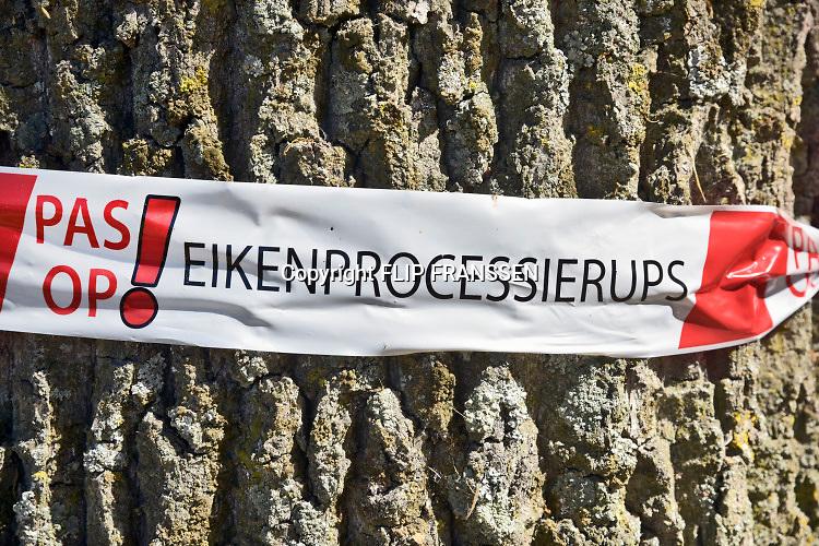 Nederland, Mook, 4-7-2019 Langs de weg wordt gewaarschuwd tegen de eikenprocessierups . Foto: Flip Franssen