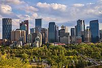 Sunnyside Bank Park (Foreground) & Calgary Skyline
