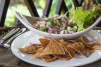 Plate of Ceviche, a popular dish in Central and South America. The dish is typically made from fresh raw fish marinated in citrus juices such as lemon or lime and spiced with chili peppers.