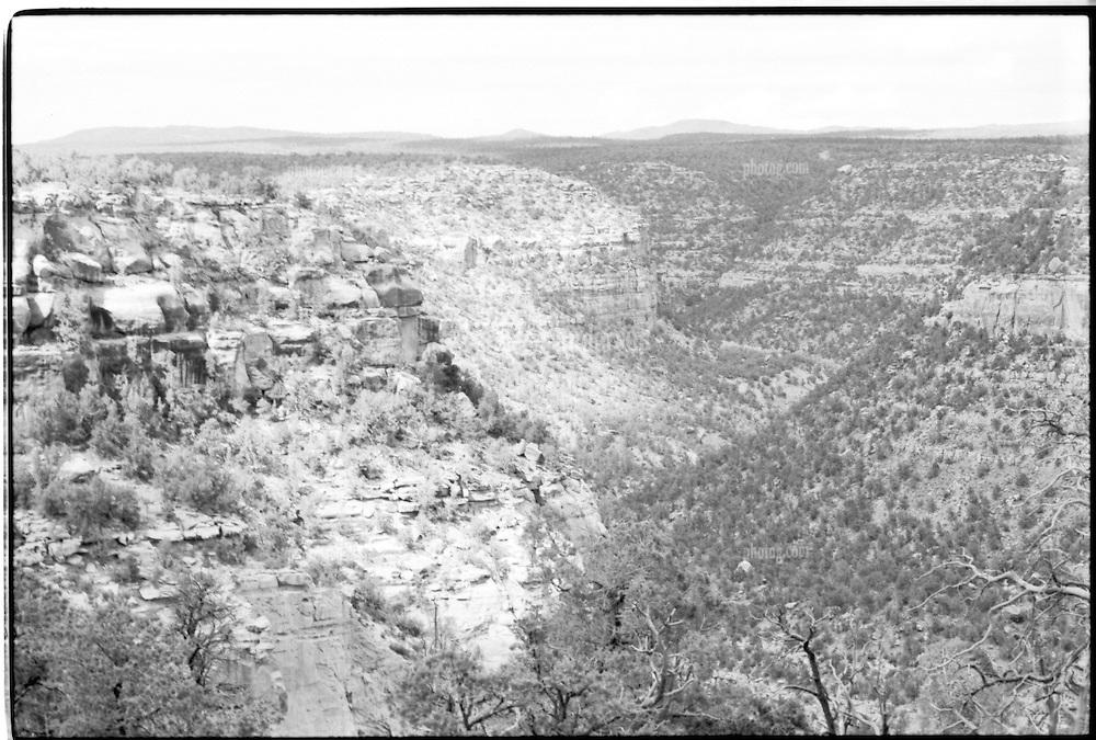 Mesa Verde National Park, Colorado, B&W photograph showing landscape near Balcony House. Shot on Panatomic-X film, Nikon Ftn Camera, 60th sec f/5.6 1/2, lens probably 50/1.4 Nikkor.