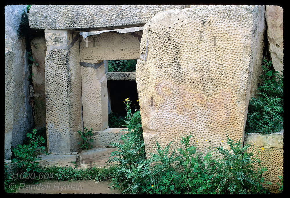 Portal and pillars are bordered with weeds inside neolithic temple of Mnajdra. Malta